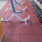 gal-gym